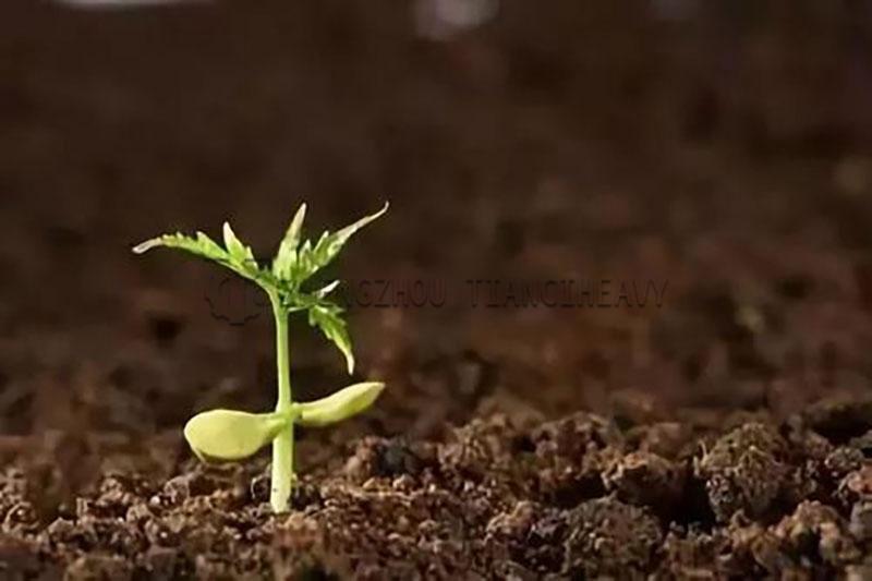 Why use organic fertilizer (5)