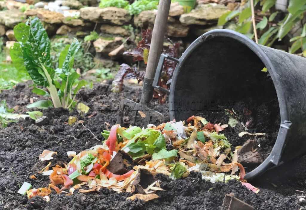 Compost fertilizer making process