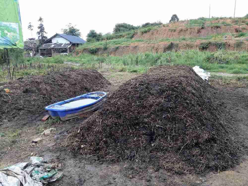 Vegetable waste compost (2)