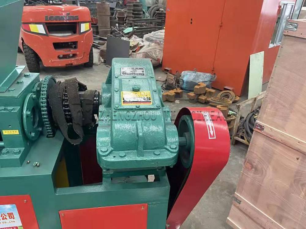 Indonesia roller press granulator (3)