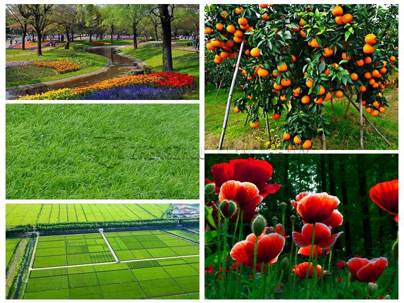 Large-scale organic fertilizer production line product application